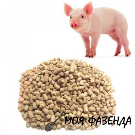 Что необходимо знать при выборе комбикорма для свиней