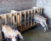 Самодельные кормушки для коз